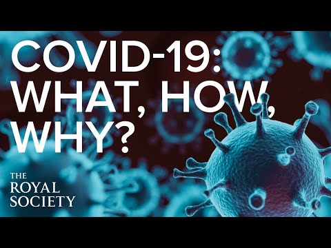 The what, the how and the why of the pandemic | The Royal Society