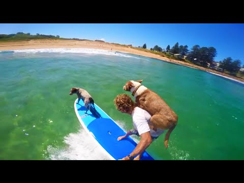 Millie and Rama surfing it up