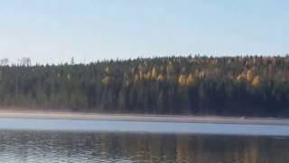 Lauri Tähkä   Kipua