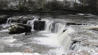 Yorkshire Dales Country Walk - West Burton to Aysgarth Falls round
