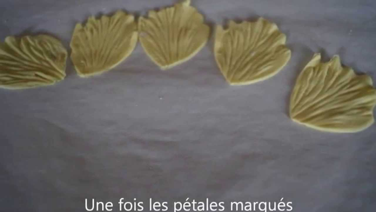 Tuto Fleurs Pate A Sucre Passion Youtube
