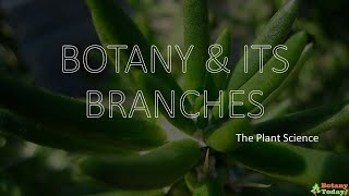 Branches of Botany | Botanical Science Sub branches
