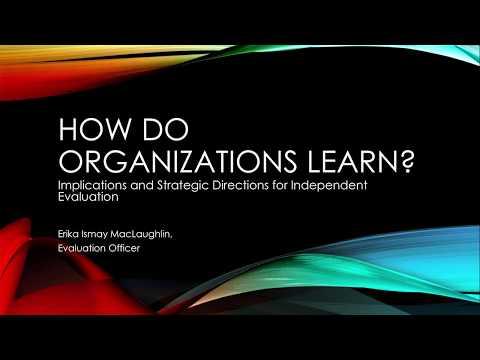 Webinar: How Do Organizations Learn?