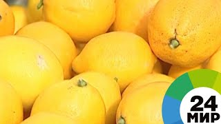 Покупает лимоны: американский Forbes назвал признак богача в России - МИР 24