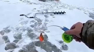 Ставил жерлицу и хапнула щука! Зимняя рыбалка.