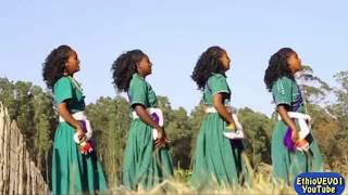 Nibret Walelign - Dese Lay (ደሴ ላይ) Ethiopian New Music 2016