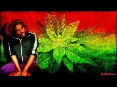 Weed trance-(dj hits) Ganja song