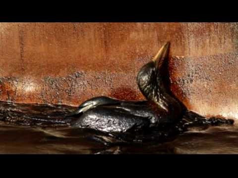 BP Oil Spill - A Drowning