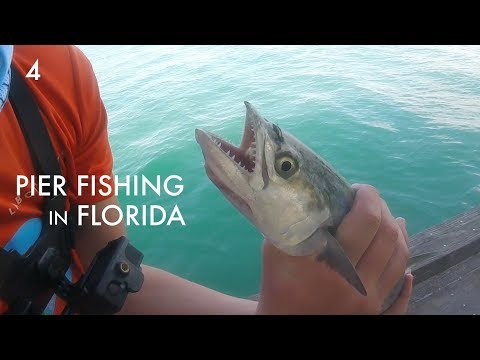 Pier Fishing On Anna Maria Island -- Fishing AMI Ep. 4
