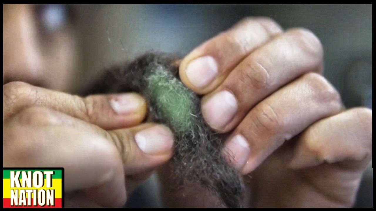 In dreads mold Your Guide