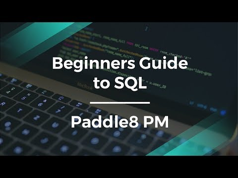 How to Make an SQL Query for Beginners by Paddle8 Product Manager