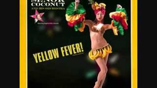 Senor Coconut- Music Plans