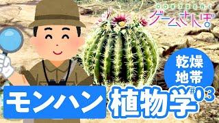 【ゲームさんぽ/MHW:IB ③】植物学者とモンハンの世界で生態系調査! サボテンは丸ければ丸いほど進化系