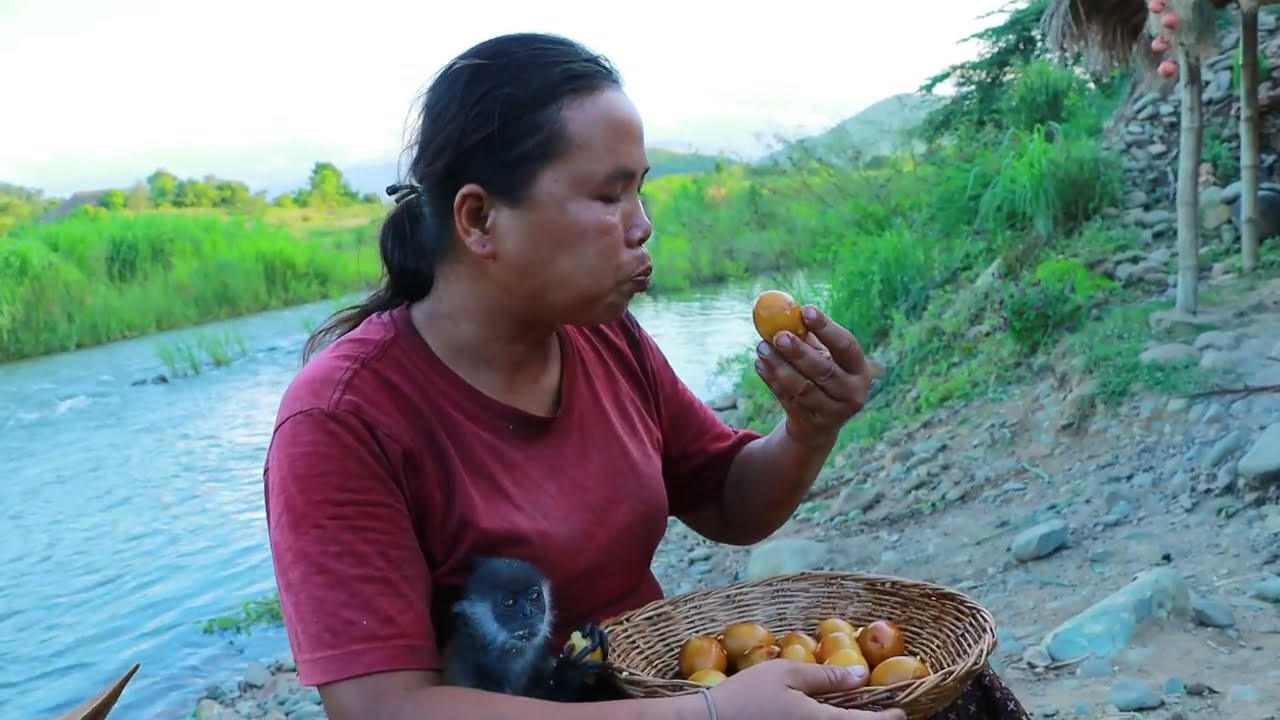 survival in the rainforest-women found a lot of goose egg for cook -Eating delicious HD