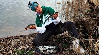 ПОПАЛА НА РАЗДАЧУ! Вечерний клёв на фидер. Рыбалка в Беларуси #160