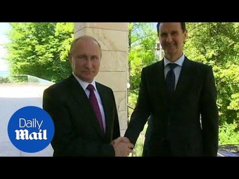 Putin and Assad congratulate each other during talks over Syria - Daily Mail