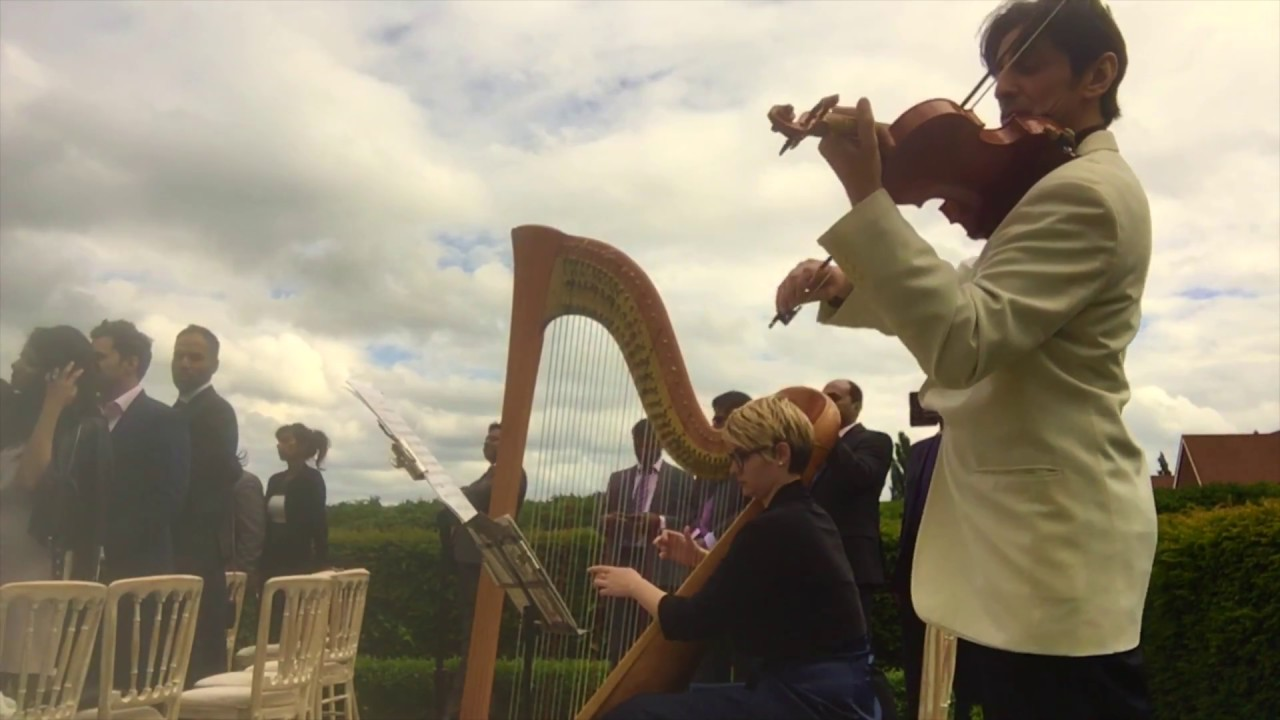 Violin Harp Canon In D And Wedding March