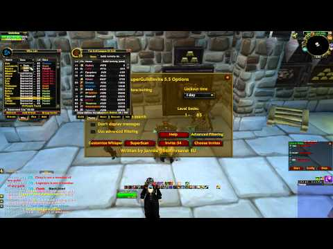How To Manage A Large Social Guild In WoW