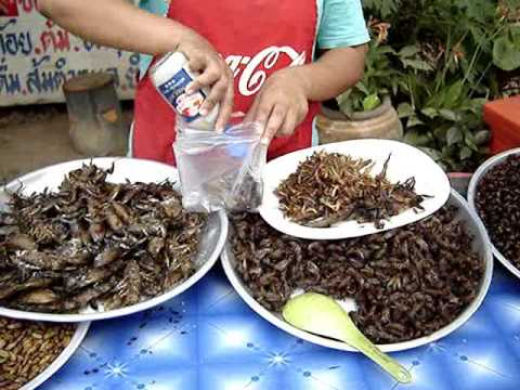 Gross Grub Thai Food Series: Shopping for Bugs Pt 3 -Wife eats cricket