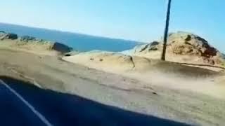 加州一号公路上汽车全速冲下悬崖 乘客身份有待确认