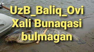 Baliq ovi #Amudaryo kularidan ushlangan baliqlar UzB #Подписаться Qilishni Unutmang 😆😆☝️😉😉👍🤘