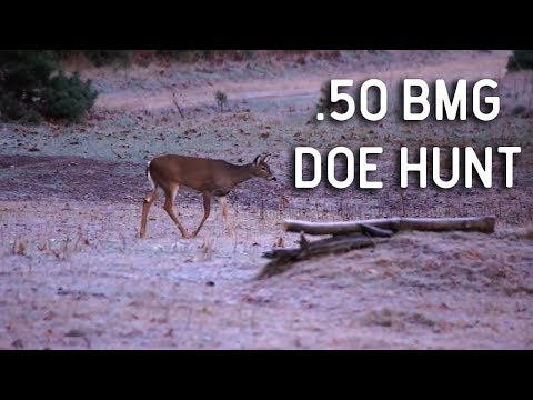 Unbelievable .50 BMG Whitetail Deer Hunt at Legends Ranch