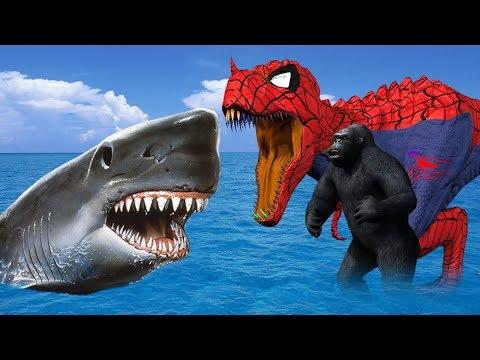 tiburón contra dinosaurio peleando para niños | peleas de animales para bebés