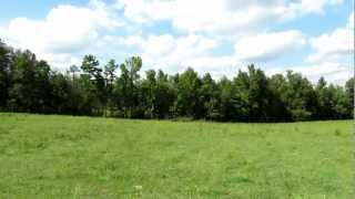 16 +/- Acre Farm on Davis Farm Rd in York, South Carolina