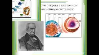 Клетка история изучения  Клеточная теория