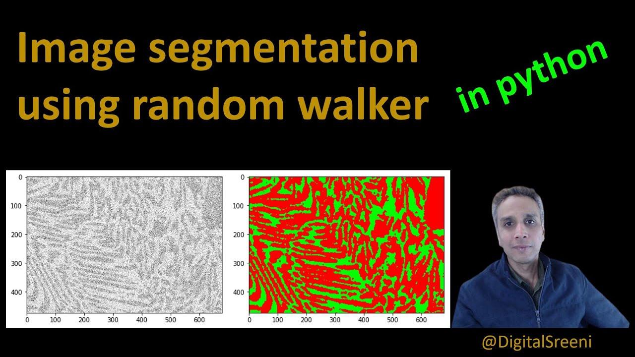 Random Walker Segmentation in Python