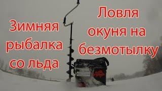 Зимова рибалка з льоду. Ловля окуня на безмотылку (мормишку без насадки)