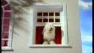 Dulux Advert - Uk - Dog Singing My Way