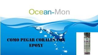 """OceanMon: Como pegar corales con Epoxy """"Ocean Wonder"""""""