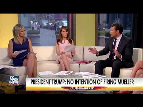 Turner: Firing Mueller would be Trump's worst political move