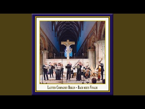 Concerto for 4 violins in b minor, op. 3 no. 10, rv 580: i. allegro (live) mp3