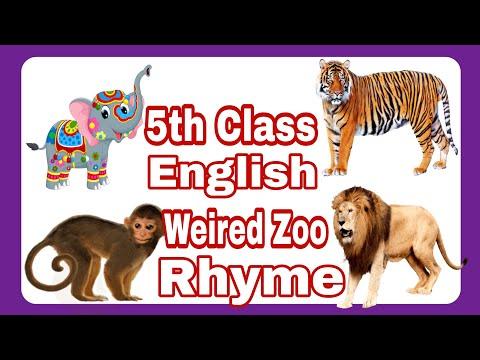 5th class English rhymes Weird Zoo poem/ rhyme
