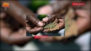 COLORADO!!!! The IGBO(Marijuana) Strand Running Nigerian Youths Mad