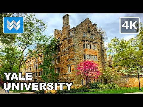 Walking around Yale University in New Haven, Connecticut 【4K