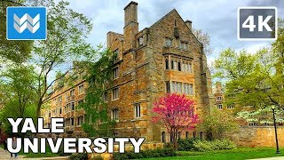 Walking around Yale University in New Haven, Connecticut 【4K】
