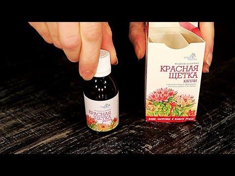 Красная щетка - лечебные травы. Адаптогены растительного происхождения