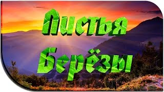видео Листья брусники: лечебные свойства и противопоказания. Лечение брусничным листом