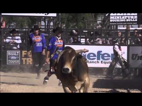 bull riding instructional videos