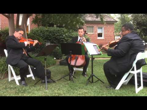 Bryan George Music Trio performs Air on the G String