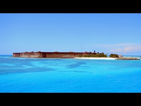 Snorkeling Fort Jefferson, Dry Tortugas National Park
