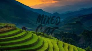 DJ Snake Ft Justin Bieber - Let Me Love You  [Eric Lumiere Cover] (Roostz Remix)