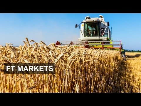 Bunge Chief On Future Of Crop Supplies