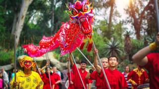 Chinese New Year of the Monkey Los Angeles ZOO DRAGON DANCE 2016