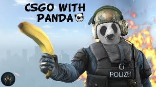 PLAYING CSGO | 100 KI HOGI FAMILY KYA | PANDA GAMING