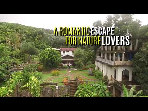 Best Bed and Breakfast in El Yunque Puerto Rico 2017