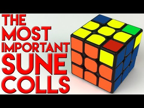 The Important Sune & Antisune COLL's | COLL Tutorial